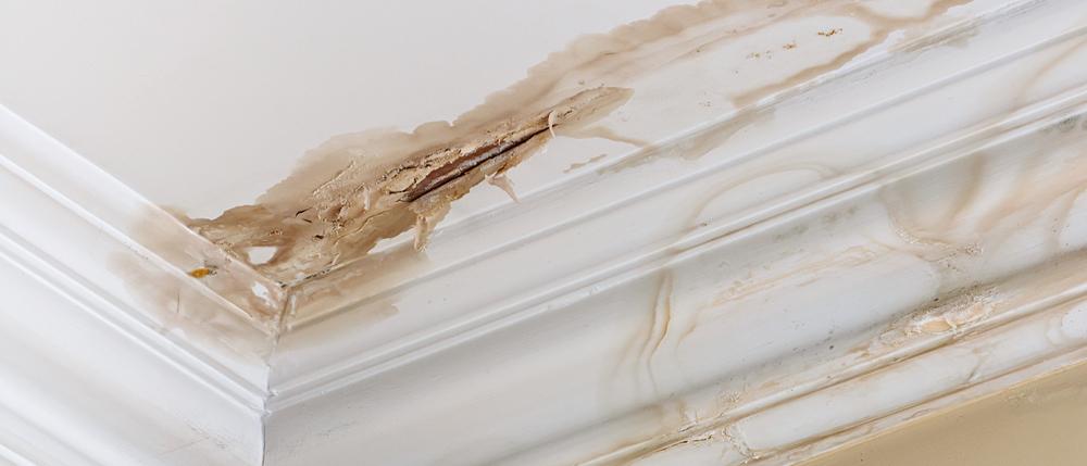 Roof Leaks Plumber Downpipes Repair Plumber Noosa